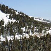 Continental Divide Trail Berthoud