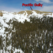 Pacific Gully